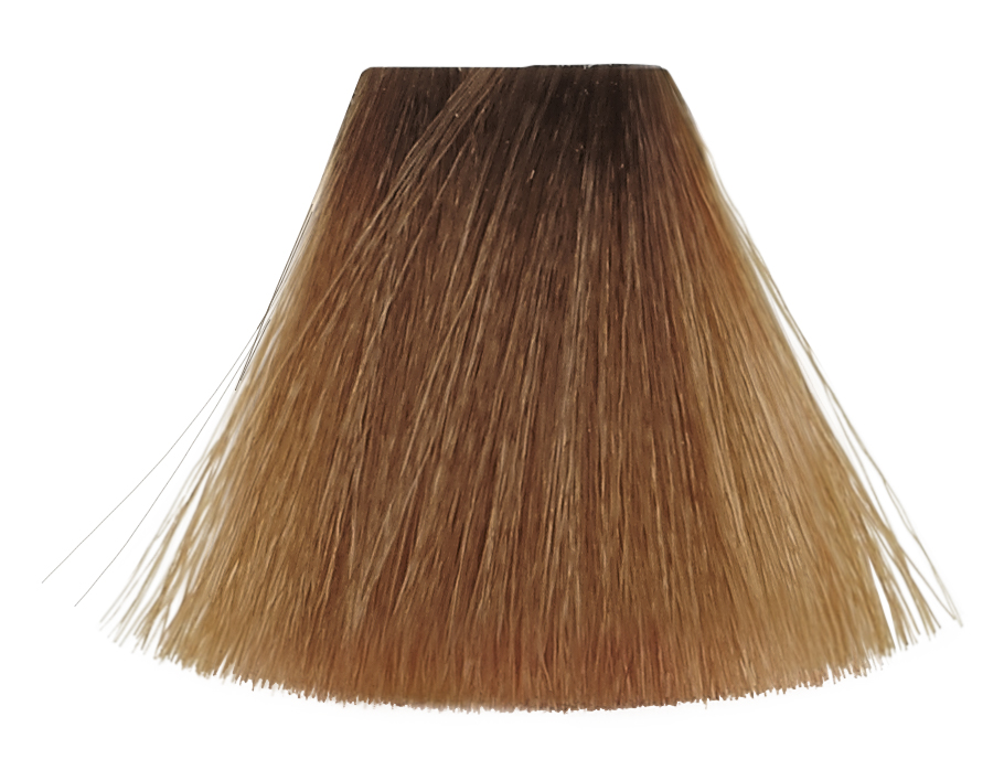 Image of Permanent hårfarve nr. 7.3 120ml