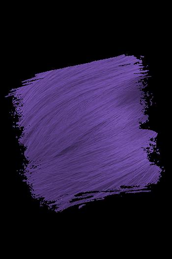 Image of Crazy Color Violette